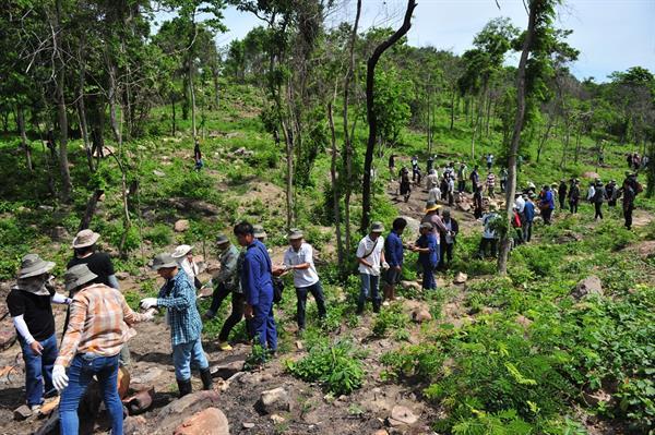 ชุมชนได้พึ่งผืนป่า ซีพีเอฟร่วมฟื้นฟู