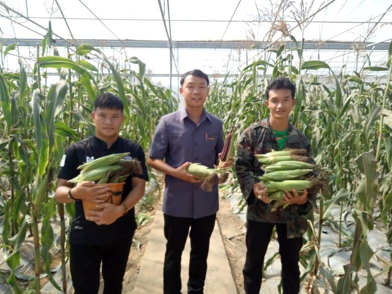 สุดเจ๋ง !เด็กเกษตรพะเยาปลูกพืชปลอดสารด้วยระบบน้ำหยดอัจฉริยะ ช่วยประหยัดน้ำหน้าแล้ง และได้ผลผลิตดี  มีคุณภาพ