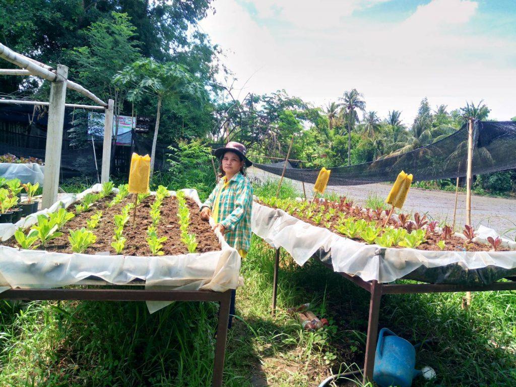 ชู ศกอ. เมืองบางระจัน พัฒนาแหล่งเรียนรู้ปลูกผักปลอดสารพิษ ขยายผลกว่า 50 ครัวเรือน