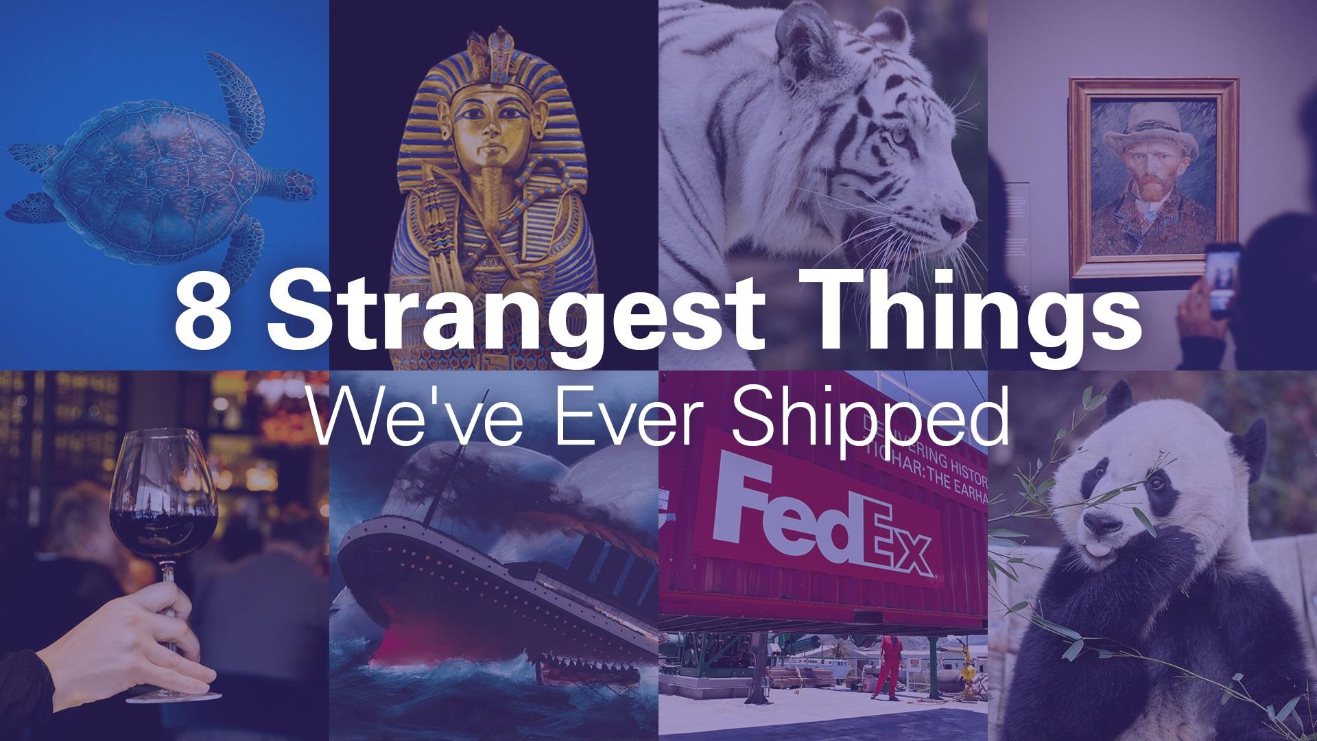 รวมสุดยอด 8 'พัสดุ' ของแปลก ที่เฟดเอ็กซ์เคยส่งข้ามฝากโลก!